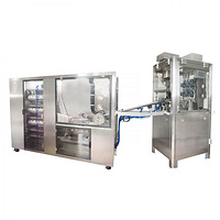 Hard Capsule Liquid Filling Machine for Oil NJP-260