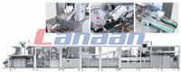 ZH SERIES CARTONING MACHINE (ZH120/ZH200/ZH300/ZH400)