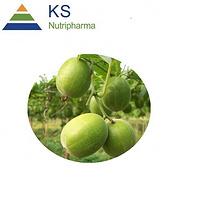 Monk Fruit Extract Mogrosides