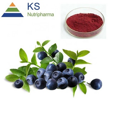 Bilberry extract 25%anthocyanin #T