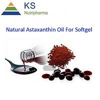 Red Algae extract #T