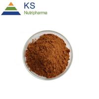 Rhodiola Rosea Extract Powder Salidroside and Rosavins