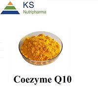 Coenzyme Q10 98% q10 powder