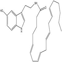 N-Arachidonoyl serotonin AA-5HT,CAS : 187947-37-1