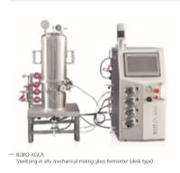 Sterilizing in situ glass fermenter (desk type)