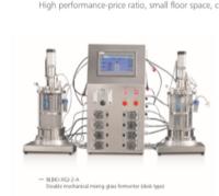 Double parallel glass fermenter (off-site sterilization)