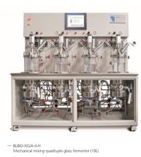 Quadruple glass bioreactor (sterilizing in situ )