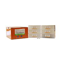 MagicPure® 96 Viral DNA/RNA Kit