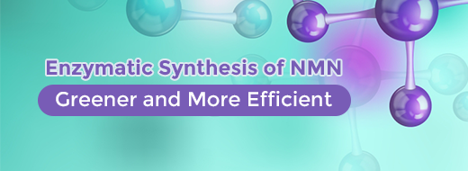 Enzymatic Synthesis of NMN: Greener and More Efficient