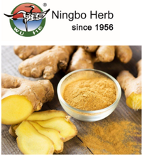 Ginger Root Powder Extract Gingerol 5%-10%