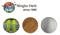 Huperzia Serrata Extract (Huperzine A) 1% 5% 99%