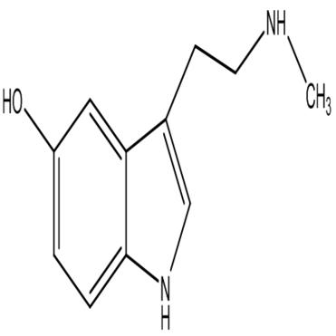 Nw-methyl-5-hydroxytryptamine,CAS:1134-01-6