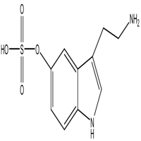 Serotonin O-Sulfate,CAS:16310-20-6