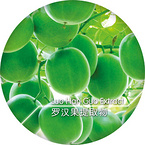Go-Luo®(Monk-Fruit-Extract)