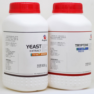 Angel Ultra-filtered Yeast Extract for Culture Media