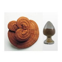 reishi powder;Ganoderma lucidum powder