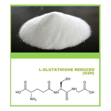 L-Glutathione Reduced (GSH)