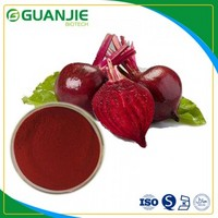 Beet red /beetroot extract extract powder /nature betanin in bulk with free sample