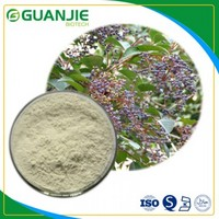Oleanolic acid High purity natural extraction with good price in bulk