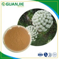 Cnidium extract / Pure nature Osthole with competitive price hot selling in stock