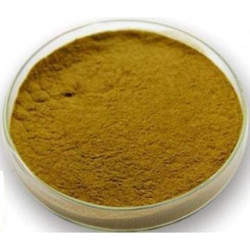 Epimedium Extract Powder 5%