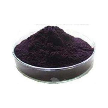 Bilberry Extract Powder 25%UV