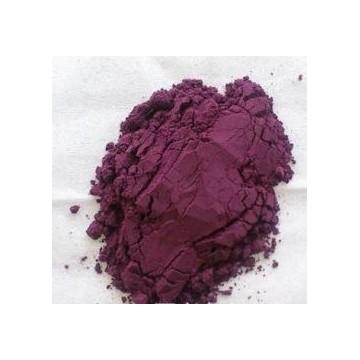 Bilberry Extract Powder UV 25%