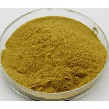 Alfalfa Extract Powder 5%Flavones