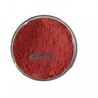 Monascus Red Color Natural Food Pigment E100