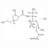 Clindamycin Palmitate Hydrochloride lincomycin