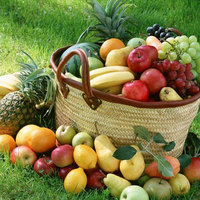 Fruit and vegetable powder plant extracts