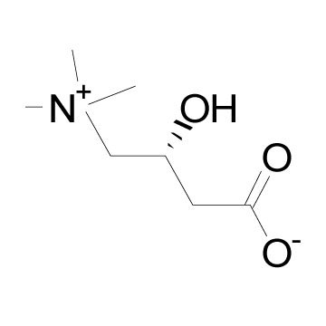 L-Carnitine other active pharmaceutical ingredients