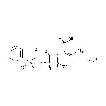 Cefadroxil cephalosporins