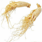 Water soluble North American Ginseng Roots P.E.