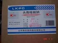 Cefazolin Sodium Sterile